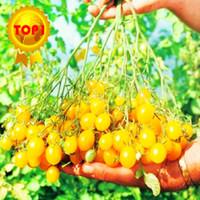 1 borsa = vendita calda 300 pz dolce Semi di Pomodoro ciliegia mini verdure gialle semi di frutta semi bonsai piante in vaso giardino di casa