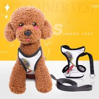 Pet supplies Nylon Leashes traction Nrope Teddy and other sm...