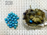 100pcs Lot Rice Colorful Loose Pearls Akoya Oyster Loose Dye...