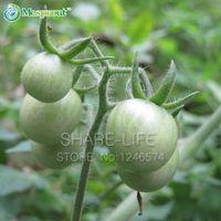 100 Pcs Tomate Verde Varanda Frutas Legumes Em Vasos De Bonsai Planta Tomates Sementes