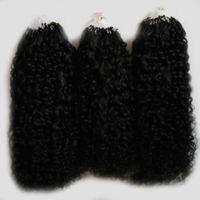 Mongolian verworrenes lockiges Haar Mikroringhaarverlängerung 300g Natürliche Farbe Menschenhaarverlängerungen Mikroschleife 1g