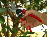 Par dhl ou ems 50 pcs pratique et ergonomique Fleur Cutter Greffage Outil Ciseaux Cisailles D'élagage Jardin Tondeuse Cutter