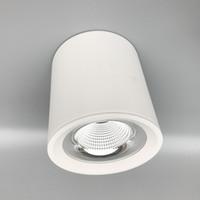 LED Silindir Tavan Aşağı Işık COB Asma kolye Spot Yüzey Ev 20W 30W için Işıklandırma LED Mounted