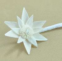10 pcs Sola Flor Com Corda Para Frangrance Difusor planta natural para difusor de ar purificador de ar