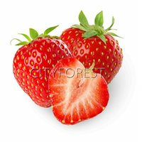 Red Strawberrry Fruit Seeds 200Pcs   Bag Yummy Aromatic Juic...