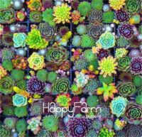 Plus vendu! 100 Pièces / Sac Succulentes Cactus Graines Lotus Lithops Bonsaï Plantes Maison Jardinage Pots de fleurs Balcon fleur de graine