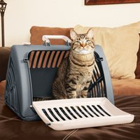النقل الجوي الحيوانات الأليفة الكلب الناقل صندوق الطائرات لطي القطط الكلب الناقل معار صندوق صغير القط الكلب الناقل لزينة السيارات ترويج