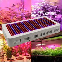True Power Full Spectrum 600W 800W 1000W LED Grow Light Kit ...