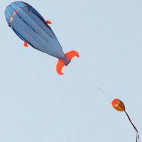 Riesiger 3D Parafoil Delphin Drachen Kinder Outdoor Fun Sport Platz Strand Fliegen Spielzeug Niedlicher Delphin Drachen Einfach zu fliegen 200x73cm