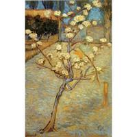 El boyalı Manzaralar sanat Armut Ağacı Çiçeği Vincent Van Gogh için yağlıboyalar Ev dekor