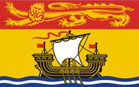 Kanada-Flagge von New Brunswick 3ft x 5ft Polyester-Fahne, die 150 * 90cm die kundenspezifische Flagge im Freien fliegt