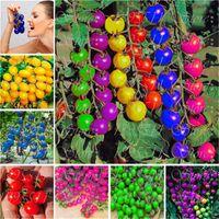 Neu! 120 stücke bunte kirschtomate samen Balkon Obst und Gemüse samen Topfpflanzen Bonsai Topfpflanze Tomatensamen Freies Verschiffen