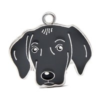Yeni Varış Köpek Kolye Asmak Charms Fit DIY Anahtarlık Anahtarlıklar Için Pet Yaka Takı Yapımı HC465