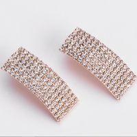 desiger Schmuck Quaste Ohrringe für Frauen Kristall lange Ohrringe einfacher Großhandel heiße Art und Weise frei von Versand
