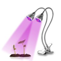 10W Dual Head UV IR Plant Grow Light con doppio interruttore e collo di cigno flessibile a 360 gradi per piante da interno