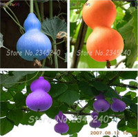 10 unids Botella de Color Calabaza Seed Gran Vino Calabaza Cuchara Lagenaria Siceraria Semillas Calabash semillas de hortalizas para jardín de casa bonsai