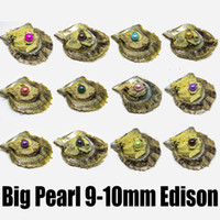 İstiridye İnci Büyük Yuvarlak İnci Istiridye Renkli Edison İnciler Büyük 9-10mm Edison İnci Istiridyeler Evde Vakum Paketli Açmak