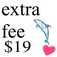 Enlace especial para la tarifa adicional $ 19