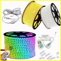Tiras LED regulables de 110 V 220V 10m 50m 100m de alto voltaje SMD 5050 RGB LED tiras impermeables + control remoto IR + Fuente de alimentación Luces de Navidad