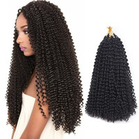 Water Wave Crochet Braids Curly Hair Freetress Crochet Curly...