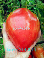 Graines de tomates rouges géantes Heirloom, graines de tomates à la fraise, pack professionnel, 100 graines / pack, plante végétale biologique pour le jardin domestique
