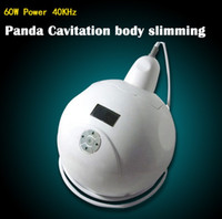 La meilleure cavitation ultrasonique portative de liposuccion de boîte du panda 40K amincissant la machine
