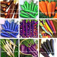 50 종자 / 팩 당근 씨앗 블루 옐로우 무 종자 야채 식물 정원 남자 Loseweight 건강 과일 및 야채 식품 씨앗