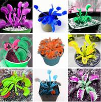 10 Pcs / Bag Insectivorous Plant Seeds 금성 파리 통 종자, 혼합 색, 실내 식물 씨앗, DIY 공장 최고의 생일 선물