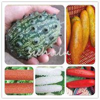 100 pçs / saco japonês mini sementes de pepino frutas inorgânicas, sementes de hortaliças, gosto de boa qualidade Família planta de jardim Entrega Gratuita