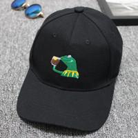 Kurbağa Karikatür Beyzbol Şapkası James Şampiyonası Işlemeli Bent Ağız ve Erkekler ve Kadınlar Şapkalar Gorras Baba Polo Şapka