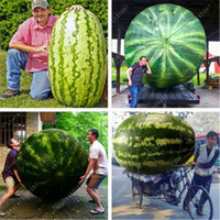 Free shipping 2018 Hot Giant Watermelon Seeds 30 pcs Fruit seed Vegetable Interest Easy to plant For Garden & Farm Family Plant