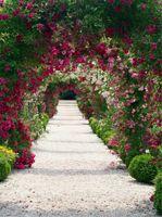 꽃 아치 문 정원 웨딩 사진 배경 인쇄 봄 풍경 녹색 식물 야외 키즈 어린이 사진 촬영 배경