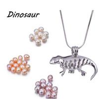 Silberner Käfig Anhänger Halskette mit natürlichen Reis Perle Dinosaurier / Einhorn / Fisch Mix Designs DIY mit eigenen Steinen Duft Diffusor Medaillon PP16