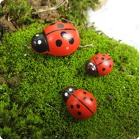 mini coccinelle rosso intelligenti insetti Beatle miniature animali Fairy Garden gnome muschio terrario arredamento bottiglia bonsai giardino