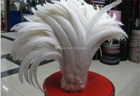 Gratis frakt 100pcs30-35cm 35-40cm / 14-16 tum ren vit rooster svansfjäder för kostym mask coque rooster svans fjädrar wediing party