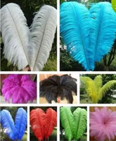 High quality beautiful ostrich feather 40- 45cm 16- 18 inches ...