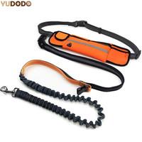 Mão Livre Elastic Dog Leash Cintura Acolchoada Ajustável Reflexivo Correndo Jogging Andando Cinto De Chumbo Pet Com Sacos Do Pouch
