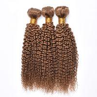Neu kommen brasilianisches Honig-blondes Menschenhaar-Bündel 27 # farbige verworrene lockige Menschenhaar-Verlängerung preiswertes brasilianisches Jungfrau-Haar spinnt