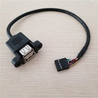 10pcs / lot Dupont 10Pin / 9Pin Femelle à Dual USB Type A Femelle Panel Mount Adaptateur Data Extension Cable 30cm