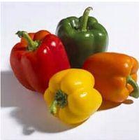 1 confezione originale 20pcs Semi di peperone dolce fai da te casa giardino ortofrutticolo