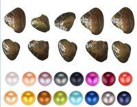 Fantezi Hediye Akoya Inci Yüksek Kalite Ucuz Aşk Tatlısu Shell Inci Oyster 6-7mm Karışık Renkler İnci Oyster Vakum Ambalaj Ile İyi
