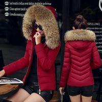2018 qualité chaud femmes manteau court de veste d'hiver parka faux raton laveur artificiel femmes col de fourrure manteau d'hiver mince veste femme