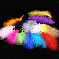 Chicken Plumes Turkey Marabou Feathers for Carnival Hallowee...