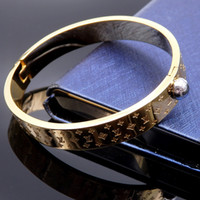 Top brand Name 316L Titanium steel bangle with black color f...