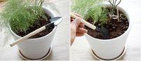 3 Pcs / Set Enfants Mini Plant Compacte Jardin Main Bois Outil Kit Pelle Pelle Râteau Pour Jardinier pot outil de culture