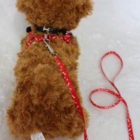 Guinzaglio per cani al guinzaglio per cani di taglia piccola e di nylon per cani piccoli e grandi Rope Cat Pet Supplies Safety For Walking