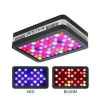 GnHok LED grow light Elite- 600W Full Spectrum for Indoor Gre...