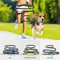 Hundeleinen, die Elastizität ausführen Hand frei Pet-Produkte Hunde Kabelbaumkragen Jogging-Blei und einstellbare Taillenseil-Trainingsleine