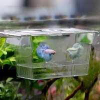 Acryl Aquarium Zucht Züchter Isolation Box Aquarium Brüterei Incubato wachsen Sämlinge Reproduktion Inhaber