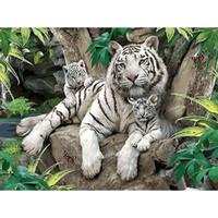 0329ZC130 Home deco pared foto DIY número pintura al óleo niños Graffiti de tigres blancos y jóvenes de animales pintura por números